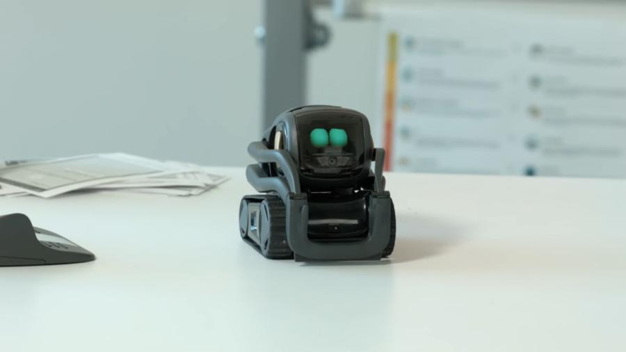 Vector Home Robot